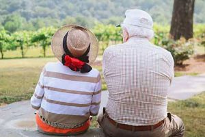 Elderly Couple Sitting Together On A Bench