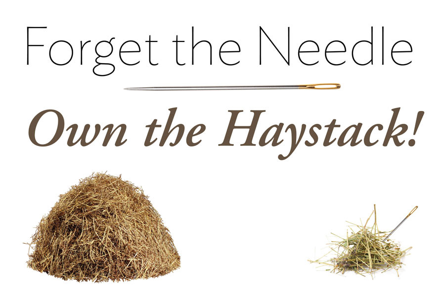 Own the Haystack